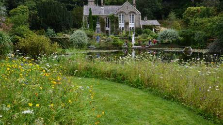 Blomstereng ved Gresgarth Hall