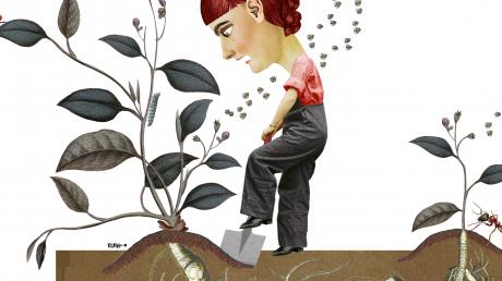 Illustration: Rikke Bisgaard