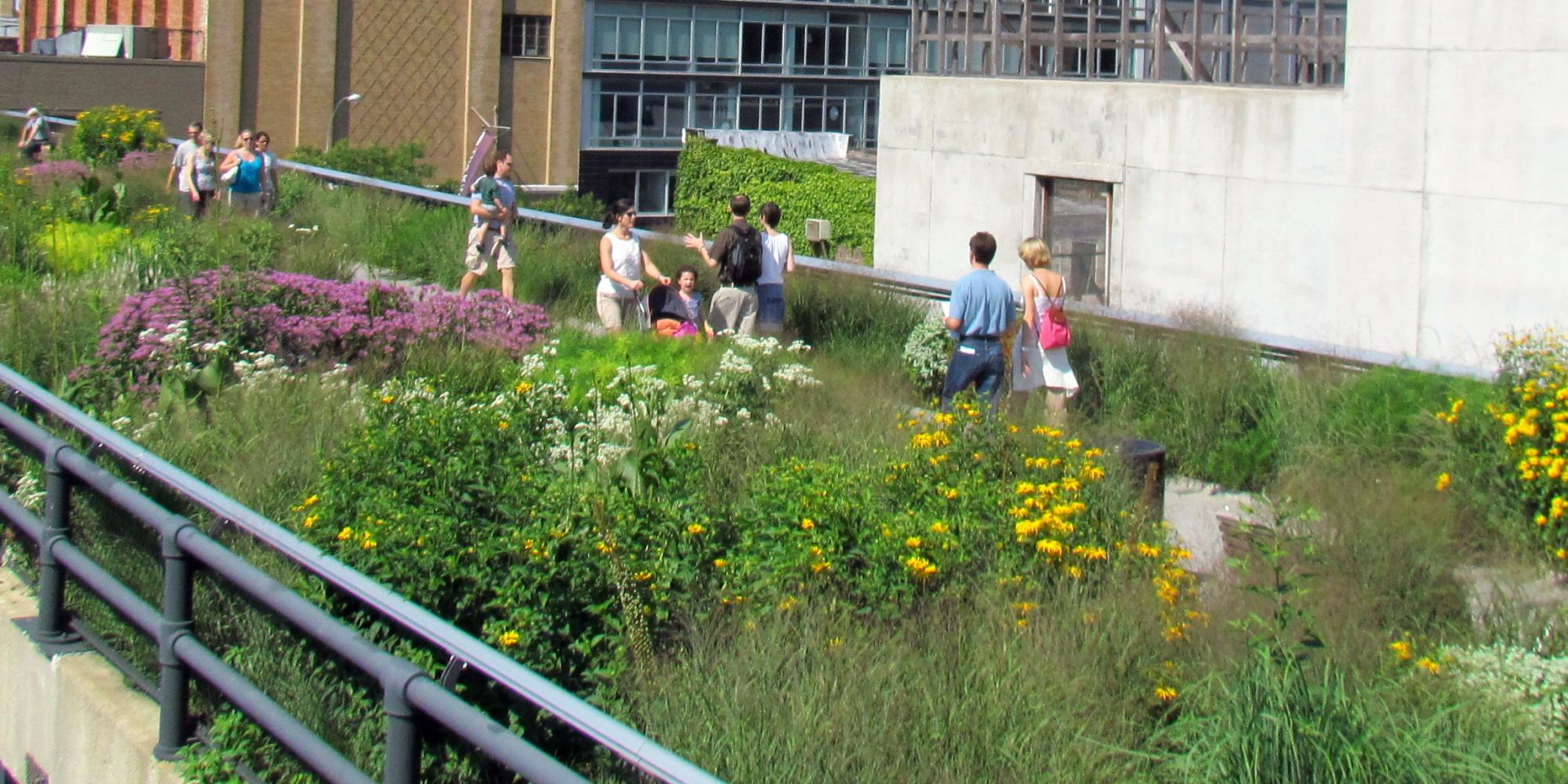 The High Line i New York. Foto: Wikimedia